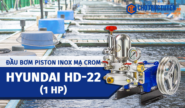 HYUNDAI HD-22 (1HP), piston inox mạ Crôm
