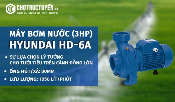 Máy bơm nước HYUNDAI HD-6A (3HP) - sự lựa chọn lý tưởng cho tưới tiêu trên cánh đồng lớn