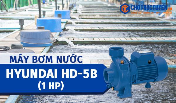 Máy bơm nước HYUNDAI HD-5B (1HP) phù hợp với nhu cầu bơm tưới quy mô vừa và nhỏ